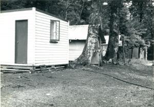 Huts at West Arm. Fiordland